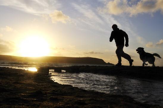photodune-2373631-silhouette-man-running-with-dog-xs