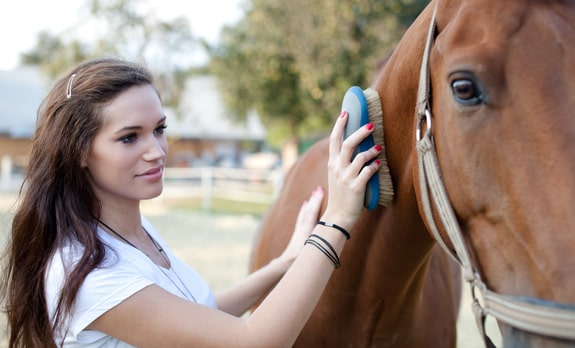 photodune-1457161-attractive-young-woman-brushing-a-horse-selective-focus-xs