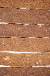 Dog food (Texture)