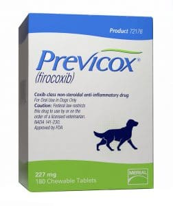 previcox-for-dogs