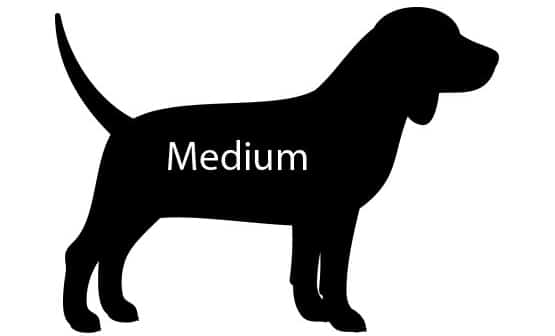 Signs Of Hip Dysplasia In Dogs - Supplement Treatment